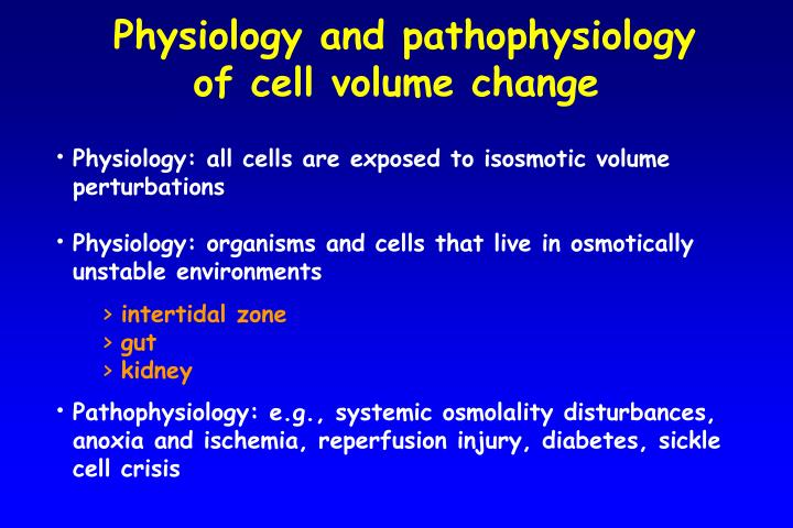 Physiology and pathophysiology of cell volume change