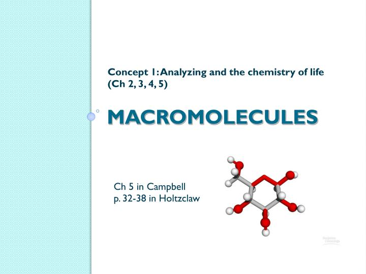 testing macromolecules 1 1) which macromolecules (or types of macromolecules) did you test for in this lab 2) how did your hypothesis compare with your results 3) describe anything that might have affected your results (sources of error.