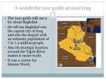 a wonderful tour guide around iraq