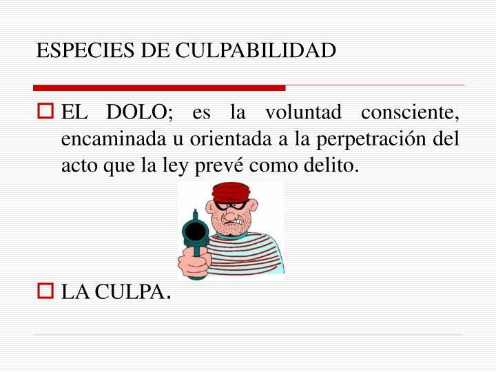 ESPECIES DE CULPABILIDAD