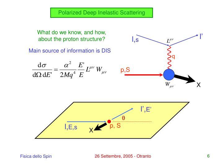 Polarized Deep Inelastic Scattering