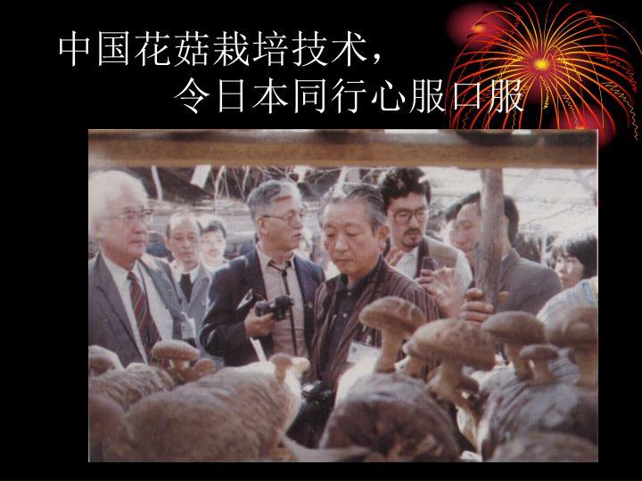 中国花菇栽培技术,