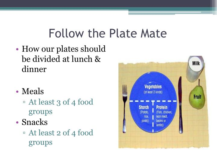Follow the Plate Mate