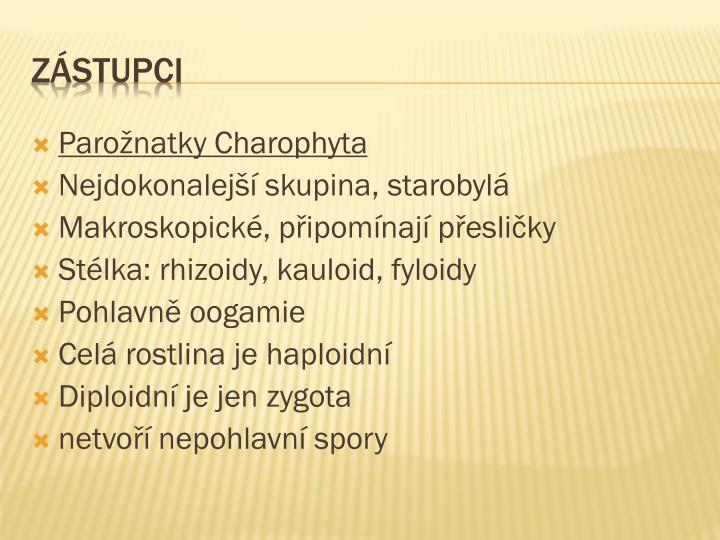Parožnatky Charophyta