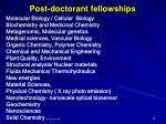 post doctorant fellowships