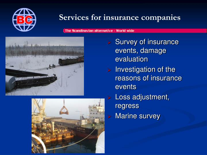 Services for insurance companies