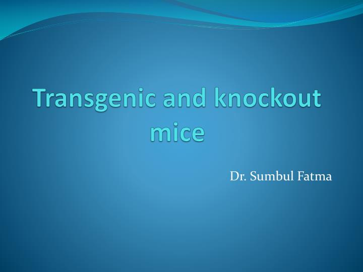 transgenic and knockout mice n.