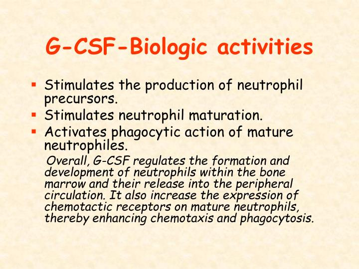 G-CSF-Biologic activities