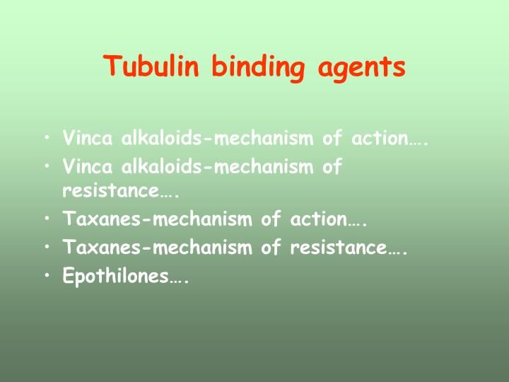 Tubulin binding agents