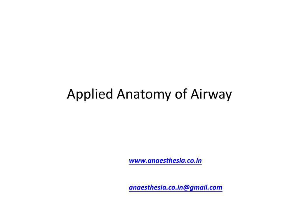 PPT - Applied Anatomy of Airway PowerPoint Presentation - ID:2976616