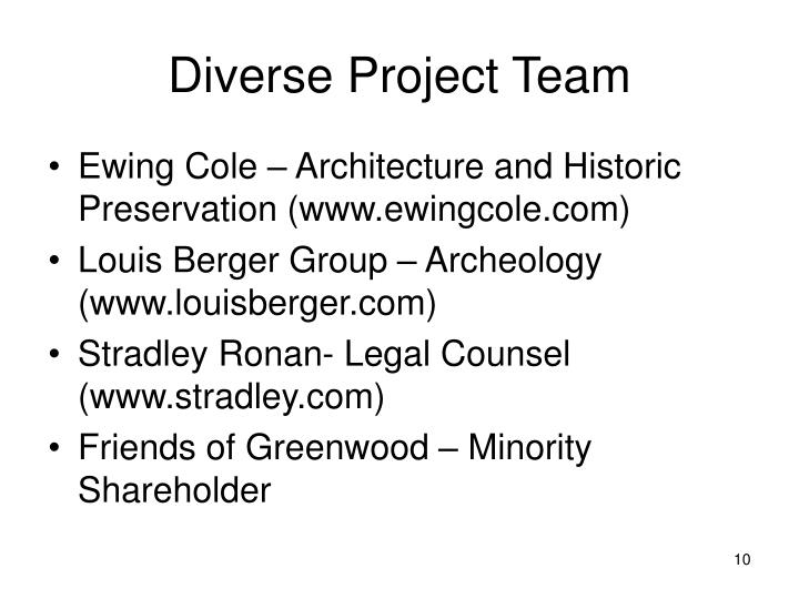 Diverse Project Team