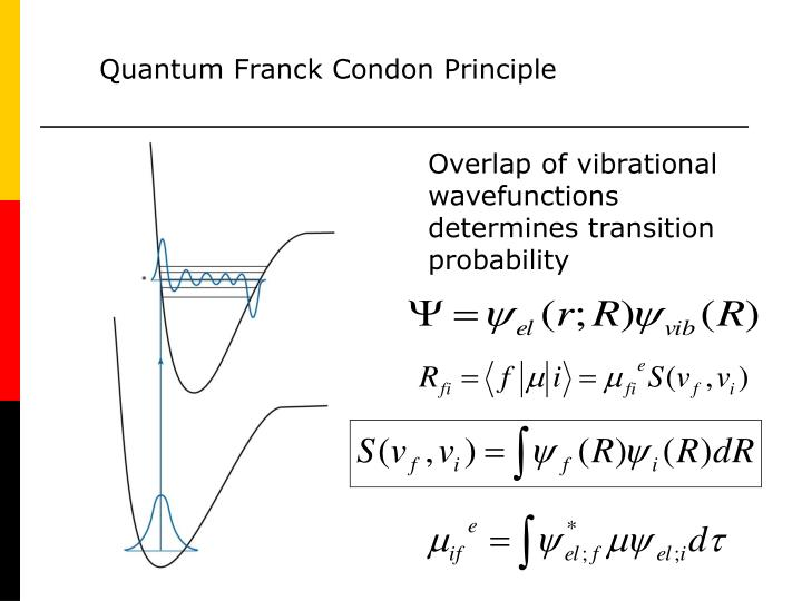 Quantum Franck Condon Principle