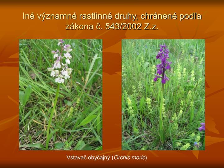 Iné významné rastlinné druhy, chránené podľa zákona č. 543/2002 Z.z.
