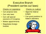 executive branch president carries out laws