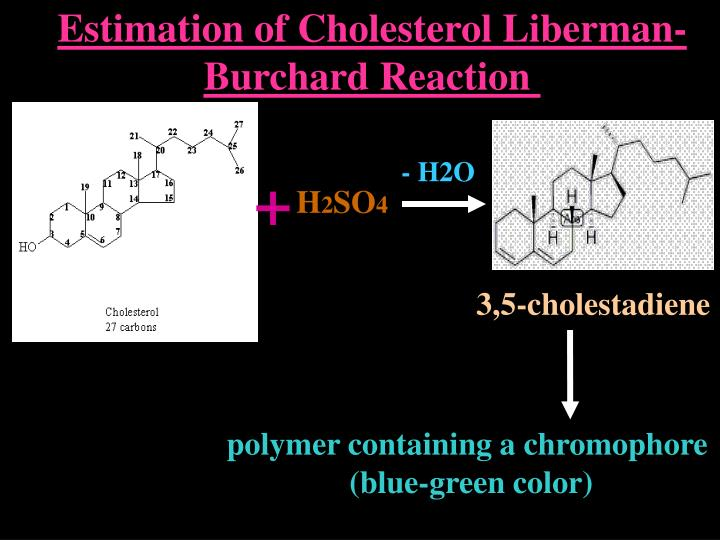Ppt Estimation Of Cholesterol Lieberman Burchard