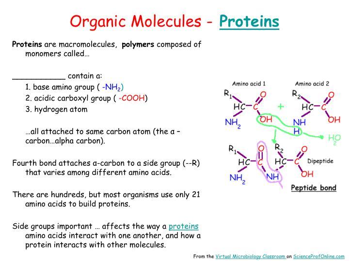 Organic Molecules -