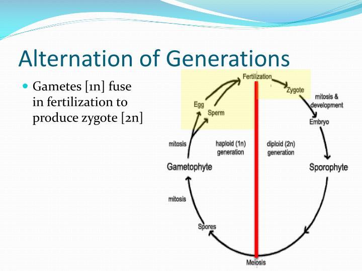 Alternation of Generations