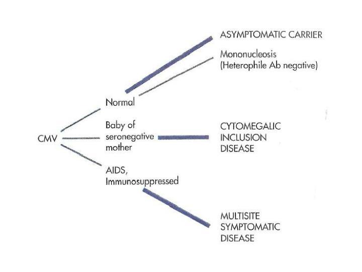 Cytomegalovirus disease