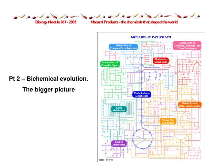Pt 2 – Bichemical evolution.