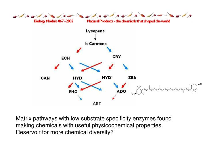 Matrix pathways with low substrate specificity enzymes found making chemicals with useful physicochemical properties. Reservoir for more chemical diversity?