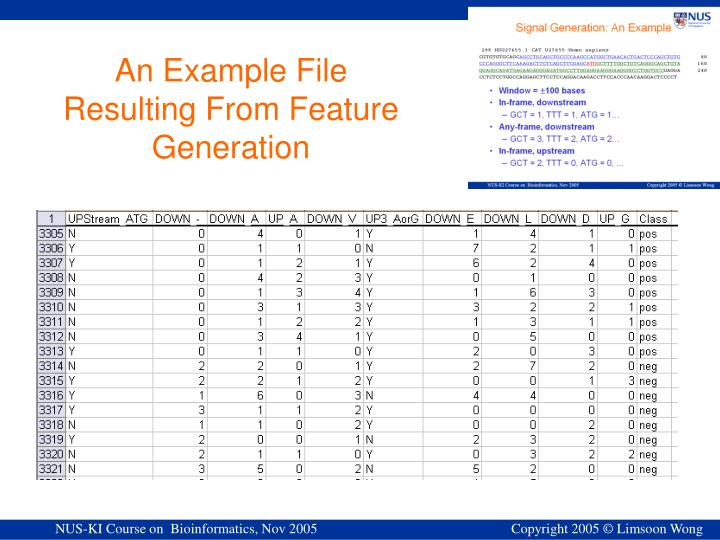 An Example File Resulting From Feature Generation