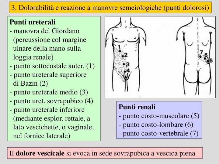 3. Dolorabilità e reazione a manovre semeiologiche (punti dolorosi)