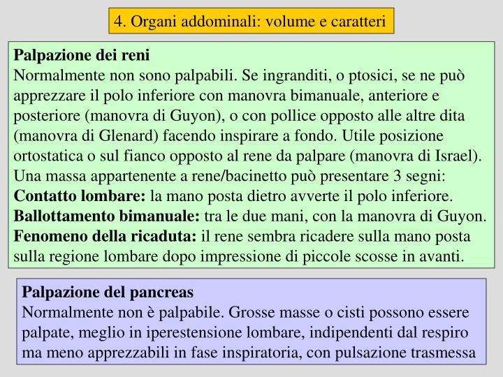 4. Organi addominali: volume e caratteri