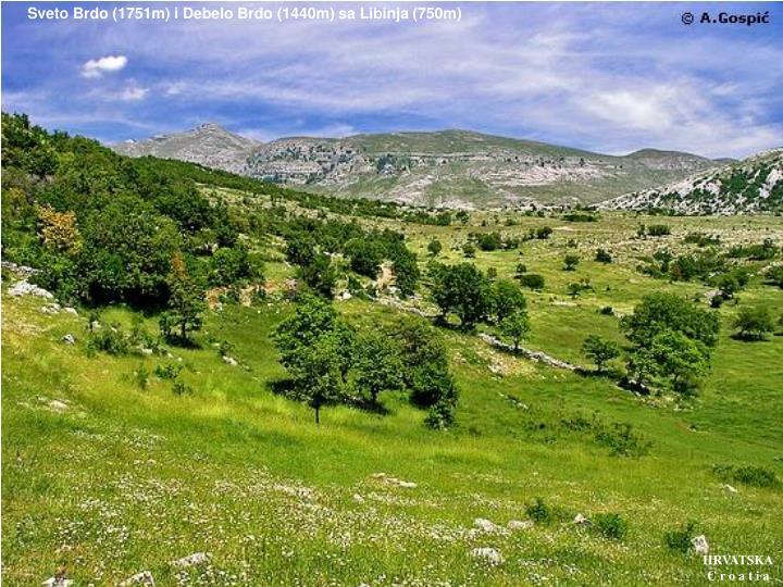 Sveto Brdo (1751m) i Debelo Brdo (1440m) sa Libinja (750m)