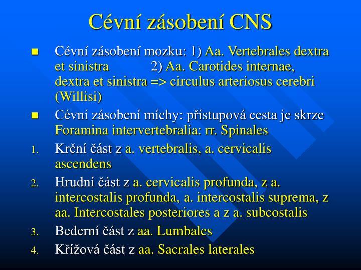 Cévní zásobení CNS