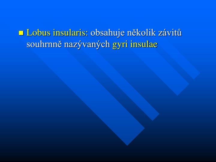 Lobus insularis: