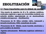 zeolitizaci n