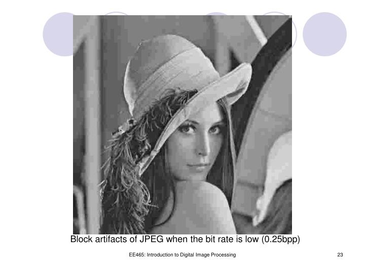 Block artifacts of JPEG when the bit rate is low (0.25bpp)