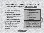 cultural influences on consumer buying decisions social class