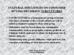 cultural influences on consumer buying decisions subcultures