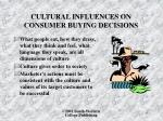 cultural influences on consumer buying decisions1