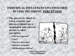 individual influences on consumer buying decisions perception