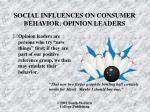 social influences on consumer behavior opinion leaders