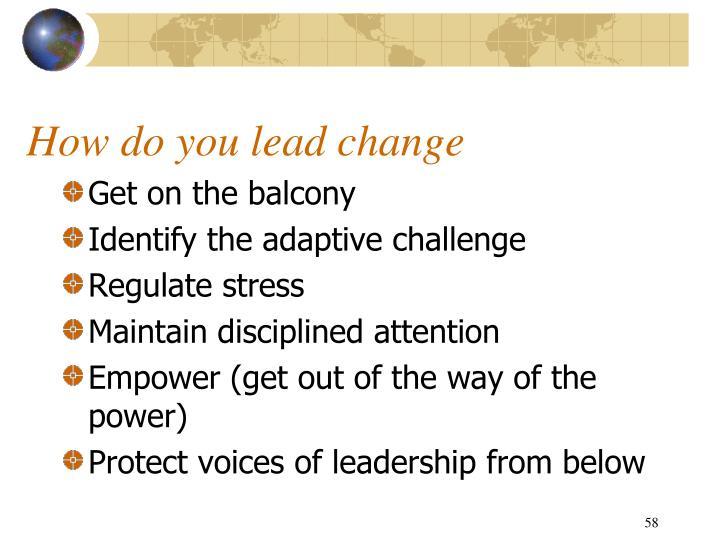 How do you lead change