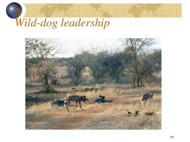 Wild-dog leadership