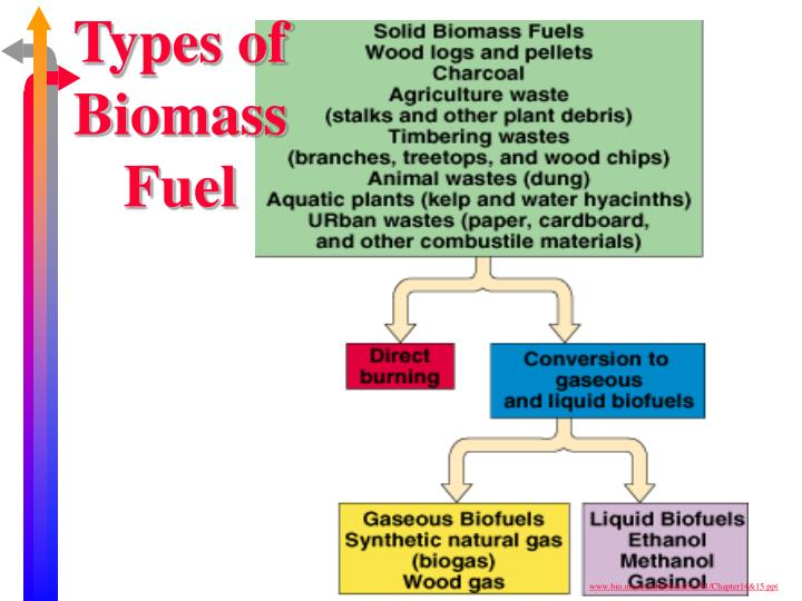 Types of Biomass Fuel