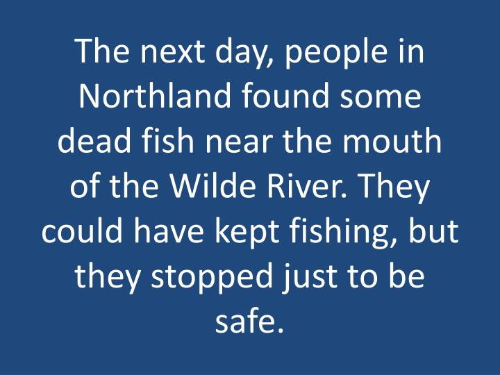 The next day, people in Northland found some dead fish near the mouth of the Wilde River. They could have kept fishing, but they stopped just to be safe.