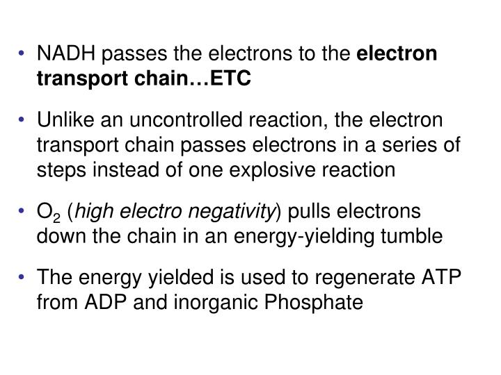 NADH passes the electrons to the