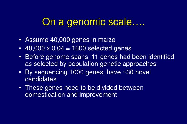 On a genomic scale….