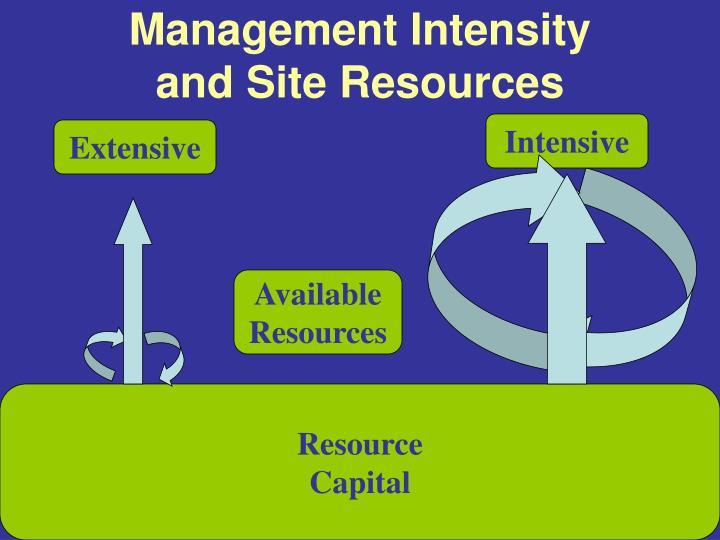 Management Intensity