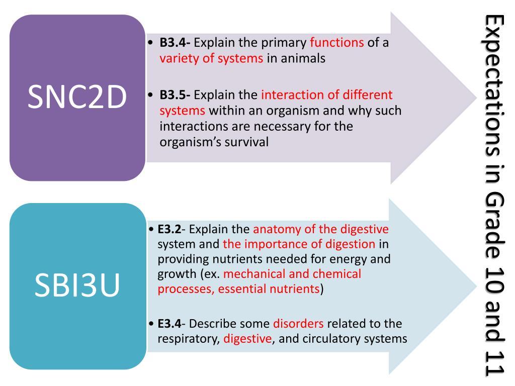 PPT - (SNC2D, SBI3U) PowerPoint Presentation - ID:2986489