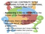 how can i contribute to the flourishing future of occupational therapy practice1