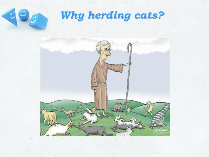 Why herding cats