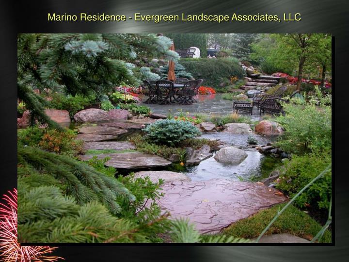 Marino Residence - Evergreen Landscape Associates, LLC