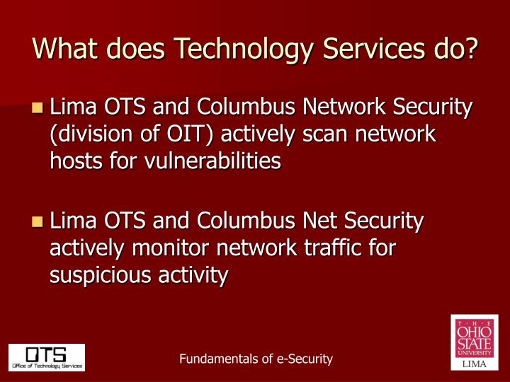 What does Technology Services do?