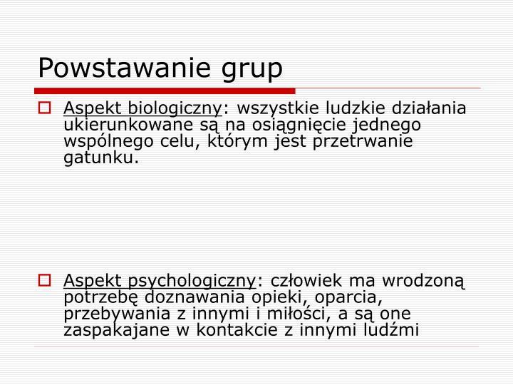 Powstawanie grup